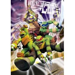 Tortugas Ninja puzzle 500 piezas